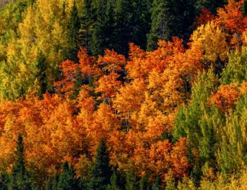 copper mountain fall activities