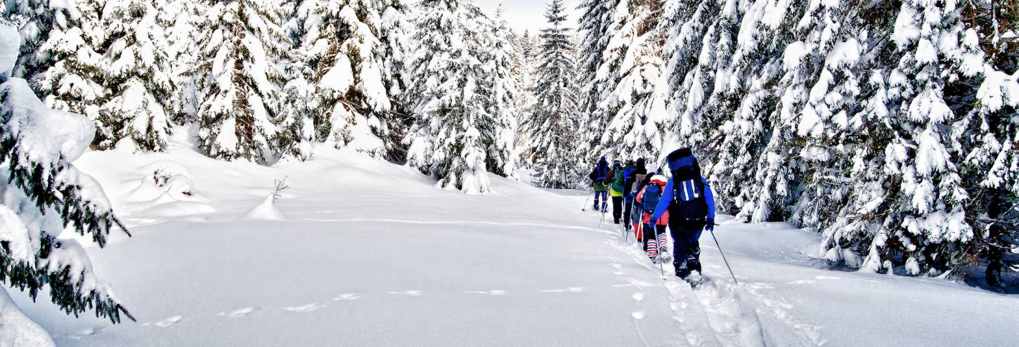 Copper Mountain Snowshoeing